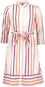 Sukienka Tom Tailor z bawełny