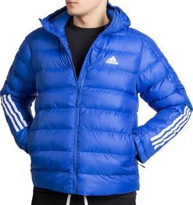 Niebieska kurtka Adidas krótka z tkaniny