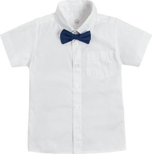Koszula dziecięca Cool Club dla chłopców z bawełny