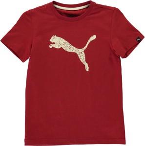 Bordowa koszulka dziecięca Puma