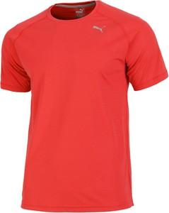 Pomarańczowy t-shirt Puma