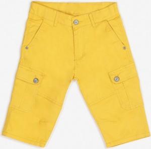 Żółte spodenki dziecięce born2be