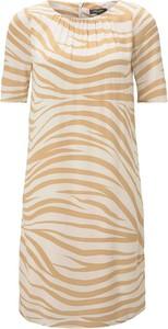 Sukienka Tom Tailor z krótkim rękawem z okrągłym dekoltem mini