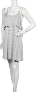 Sukienka Betty Basics z okrągłym dekoltem