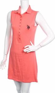 Sukienka U.S. Polo