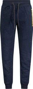 Niebieskie spodnie sportowe Anapurna w sportowym stylu z bawełny
