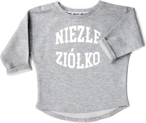 Bluza dziecięca ilovemilk.pl z bawełny dla chłopców