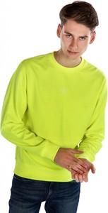 Zielona bluza Calvin Klein w stylu casual