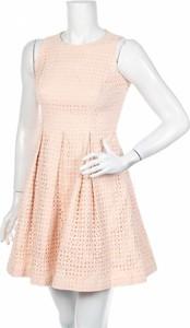Różowa sukienka Eliza J rozkloszowana z okrągłym dekoltem