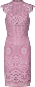 Sukienka Chi Chi London dopasowana z bawełny z okrągłym dekoltem