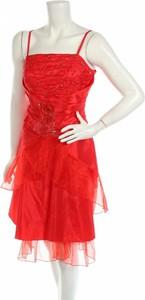Sukienka Cherlone mini