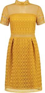 Pomarańczowa sukienka Nikkie z krótkim rękawem