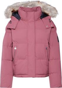 Różowa kurtka Calvin Klein w stylu casual z tkaniny krótka