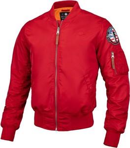 Czerwona kurtka Pit Bull z tkaniny