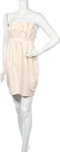 Sukienka The Garden By H&m mini w stylu casual bez rękawów