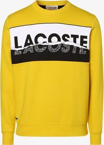 Żółta bluza Lacoste