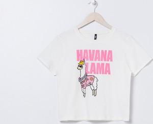 koszulka z lamą stylowo i modnie z Allani