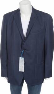 Niebieska marynarka Pierre Cardin