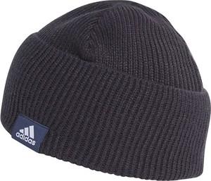 czapki zimowe skórzane męskie stylowo i modnie z Allani