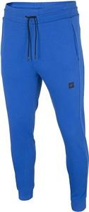 Spodnie sportowe 4F w sportowym stylu z dresówki