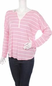 Różowa bluzka Gap