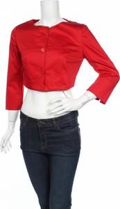 Czerwona kurtka Edas w stylu casual