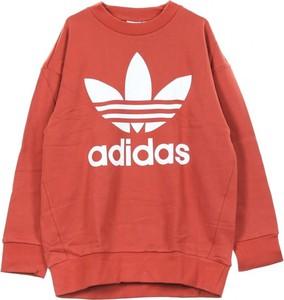 Czerwona bluza Adidas z bawełny