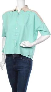 Zielona koszula Ddp