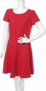 Czerwona sukienka Sinéquanone w stylu casual mini rozkloszowana