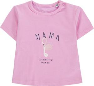 Odzież niemowlęca Tom Tailor dla dziewczynek