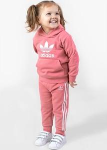 Bluza Adidas w sportowym stylu z dresówki
