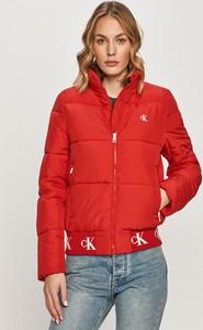 Czerwona kurtka Calvin Klein w stylu casual krótka