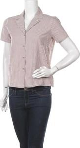 Brązowa koszula Minimum