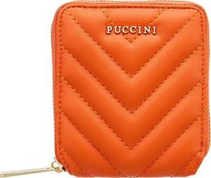 Pomarańczowy portfel PUCCINI