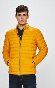 Żółta kurtka Medicine