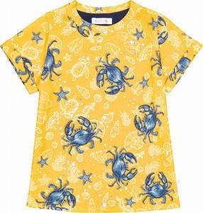 Koszulka dziecięca Ewa Collection z krótkim rękawem z bawełny
