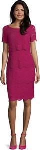 Sukienka Vera Mont z bawełny ołówkowa z krótkim rękawem