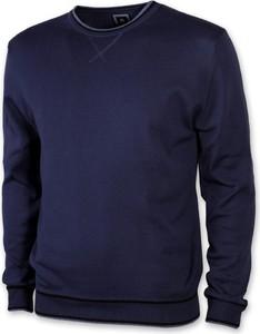 Niebieski sweter Willsoor