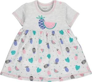 Odzież niemowlęca Lamino dla dziewczynek