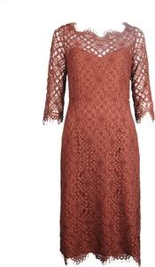 Brązowa sukienka Twinset z długim rękawem