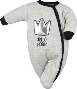 """Ciepły Pajac """"Hello World"""" Koala"""