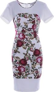 Sukienka Fokus dopasowana midi w stylu glamour
