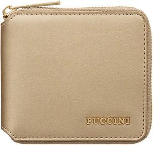 Złoty portfel PUCCINI