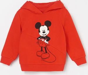 Czerwona bluza dziecięca Reserved dla chłopców