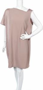 Różowa sukienka Fiorella Rubino prosta z krótkim rękawem