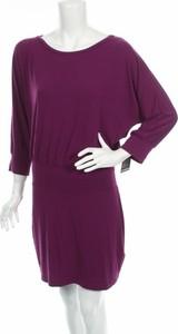 Sukienka Express prosta w stylu casual z okrągłym dekoltem
