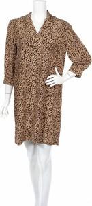 Sukienka Oysho prosta z długim rękawem mini