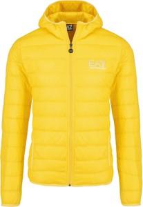 Żółta kurtka EA7 Emporio Armani z dresówki