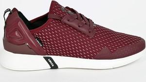 Bordowe buty sportowe Levis sznurowane