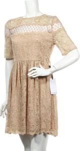 Sukienka Perseverance London mini rozkloszowana